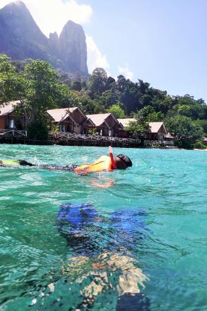Tunamaya Beach & Spa Resort - Tioman Island: snorkeling at Tunamaya Resort beach