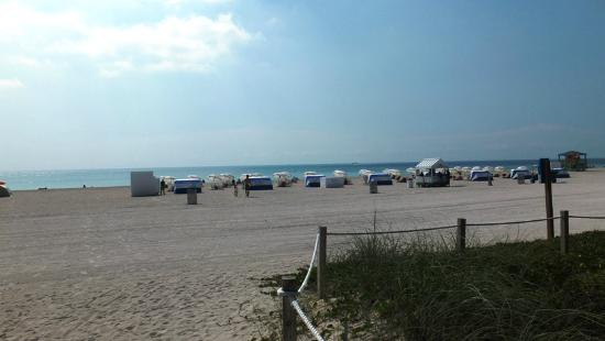 Ocean Front Hotels In South Beach Miami Fl