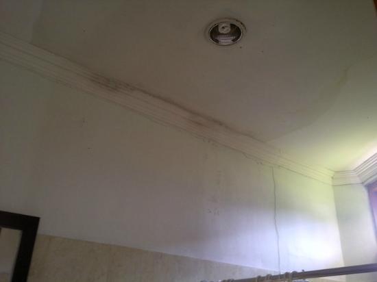 LPP Garden Hotel : bathroom ceiling