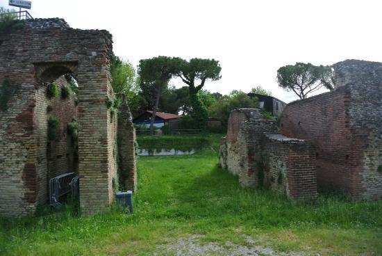 Anfiteatro Romano: 周りを回りながら見学できます