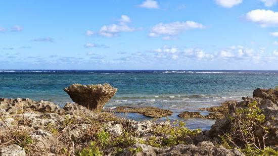 Ojima Island