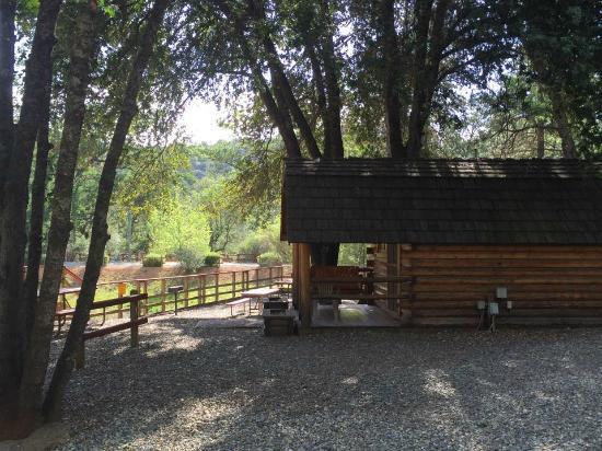 Yosemite West / Mariposa KOA: View from our cabin door