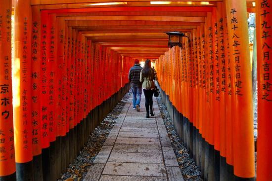 伏見稲荷大社 - Picture of Fushimi Inari-taisha Shrine, Kyoto ...