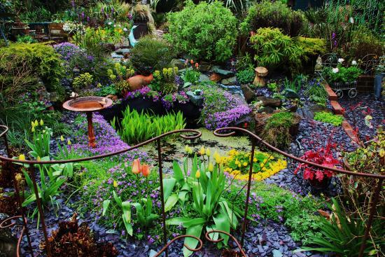 Attractive Driftwood Garden East Sussex: Driftwood Garden