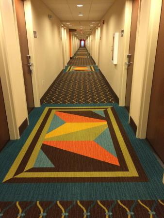 "Hampton Inn & Suites Clarksville: Hallway at Hampton Inn & Suites-Clarksville...definitely not a ""plain-Jane"" decorating touch!"
