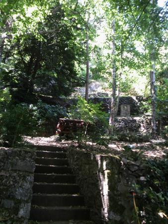 vue d 39 un des nombreux bassins et ses fleurs picture of le jardin d 39 eden tournon sur rhone. Black Bedroom Furniture Sets. Home Design Ideas