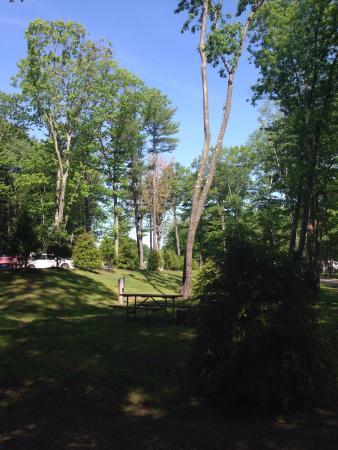 Tenting in June