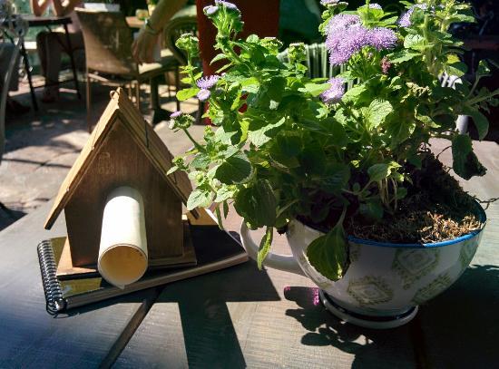 Desayunando en el mejor jard n de madrid fotograf a de for El jardin secreto salvador bachiller