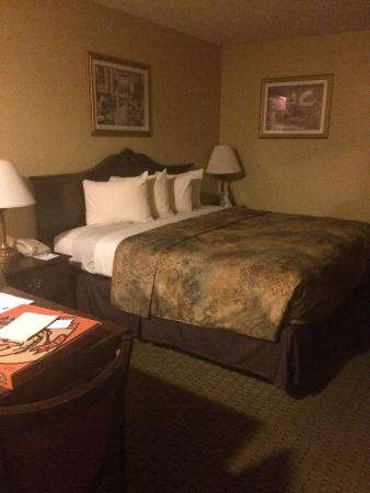 BEST WESTERN Cocoa Inn: Room