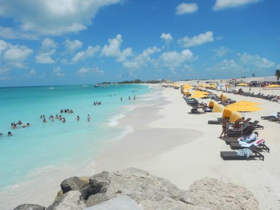 playa bimini picture of hilton at resorts world bimini bimini