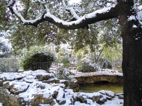 Parco Nemorense o Virlgiliano