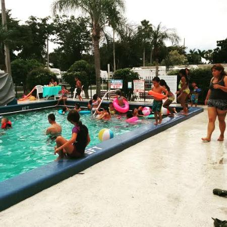 School 39 s out celebration pool party june 2015 picture for Florida pool show 2015