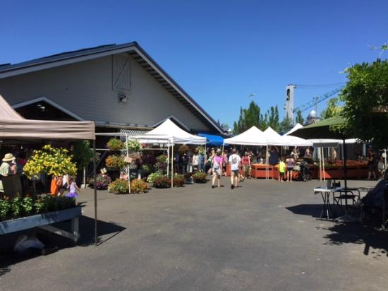 Percival Landing: Farm Market