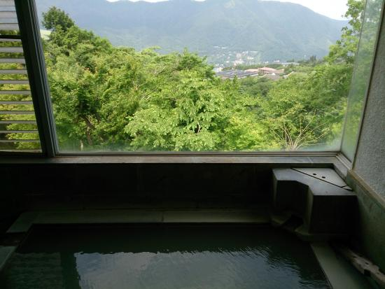 Gosaikan: 浴室からの眺め