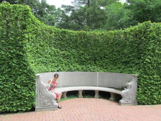 Lovely Li in a unique curved hedge bench - Picture of Longwood ...