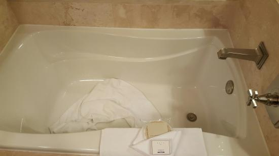 Hotel Ivy, A Luxury Collection Hotel, Minneapolis: The Clean Bathroom    With Dirty
