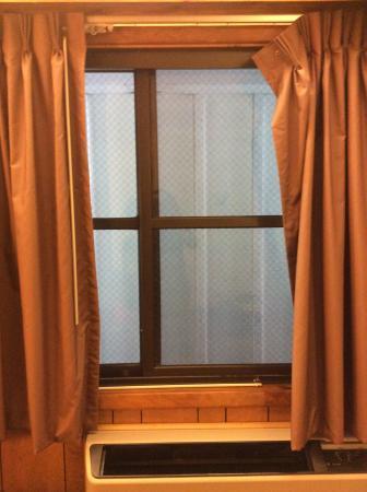 Virginian Lodge: Aussicht aus dem Fenster  - Zimmer 172