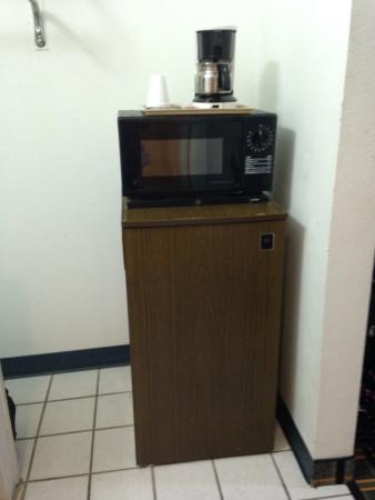 Delhi, LA: Fridge, microwave, coffee maker