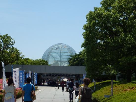 水族園 - Foto di Tokyo Sea Life Park, Edogawa - TripAdvisor