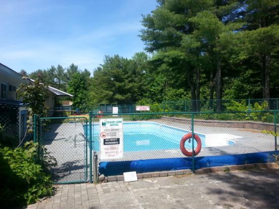 Cedar Lane Motel: pool