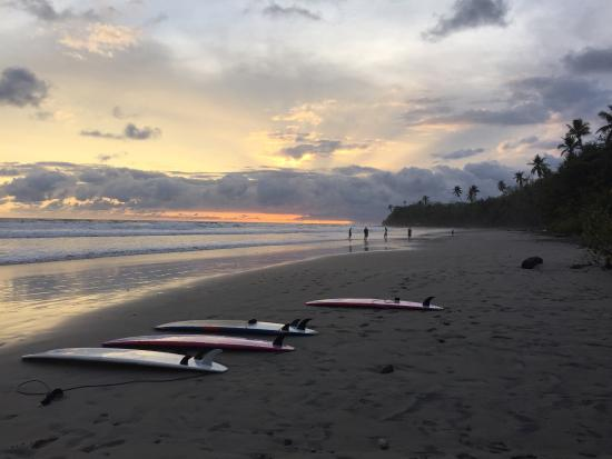 Nalu: Great teachers, good equipment, an all around hit!  I would definitely recommend this surf schoo