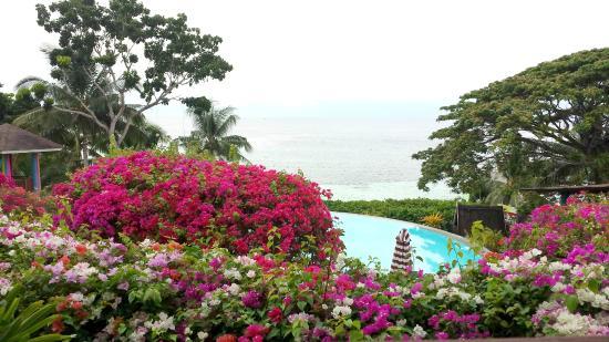 Flushing Meadows Resort & Playground: the infinity pool