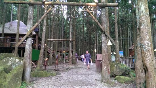 Mawudu Forest
