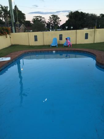 Pool - Hotel Forster Photo