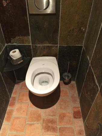 Awesome Toilet Comes With Just A Bowl And No Seat Cover Picture Of Beatyapartments Chair Design Images Beatyapartmentscom