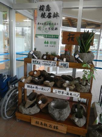 Sakurajima Michi-no-Eki: 桜島軽石鉢