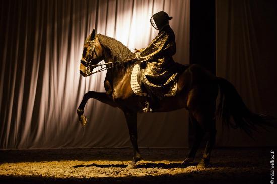 Theatre Equestre de Bretagne