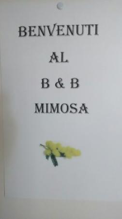 Mimosa B&B