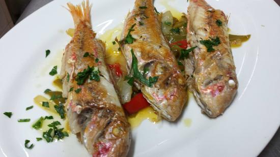 restaurante bar la xarxa en tarragona con cocina