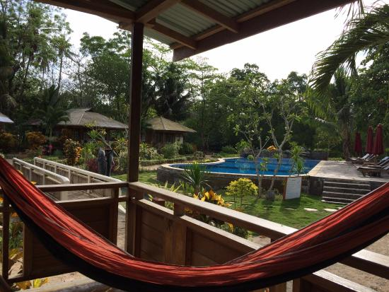 Two Fish Divers Bunaken : View of pool from cottage