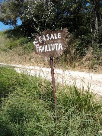 Casale Favilluta: Per di qua!