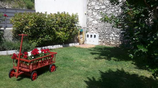 Pansion Rose: Flower cart