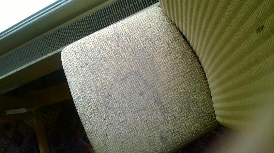 Premier Inn Andover Hotel : The chairs in the restaurant