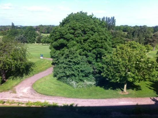 Humber Royal Hotel: The view from our room