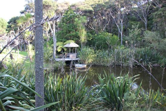 Kowhai Close : Pond