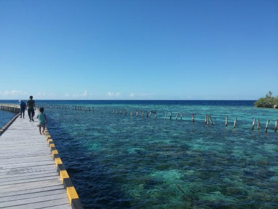 Togian Islands, Indonesia: jembatan suku bajo pulau papan