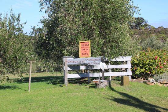 Kowhai Close : Front entrance