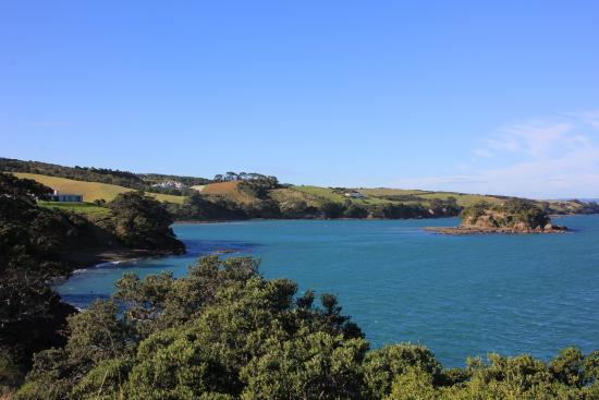 Kowhai Close : Views from the walking track down by the ocean