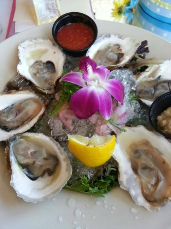 Ron's Landing At Rocky Bend: OYSTERS ON THE HALF SHELL Freshly opened oysters served with cocktail sauce, lemon and horseradi