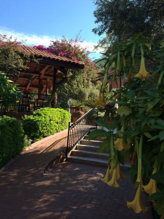 Liberty Hotels Oludeniz: отель
