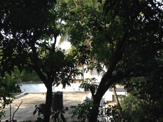 Swaroop Hotel: Balkon Zimmer 305