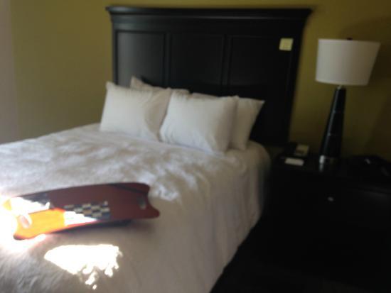 Hampton Inn & Suites Clarksville: bed