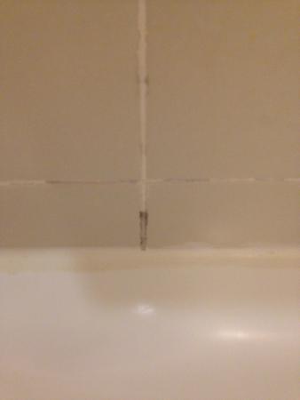 Sheraton Edison: mold in the bathroom