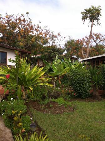 Mana Nui Inn: Excelente alternativa de alojamiento
