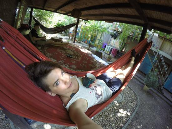 Shantee House : lounging in stress-free garden with super fast wifi, and birds song