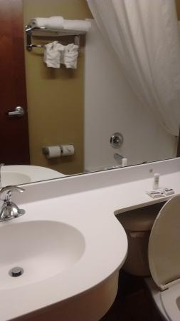 Microtel Inn & Suites by Wyndham Council Bluffs: Small bathroom but enough to meet needs.